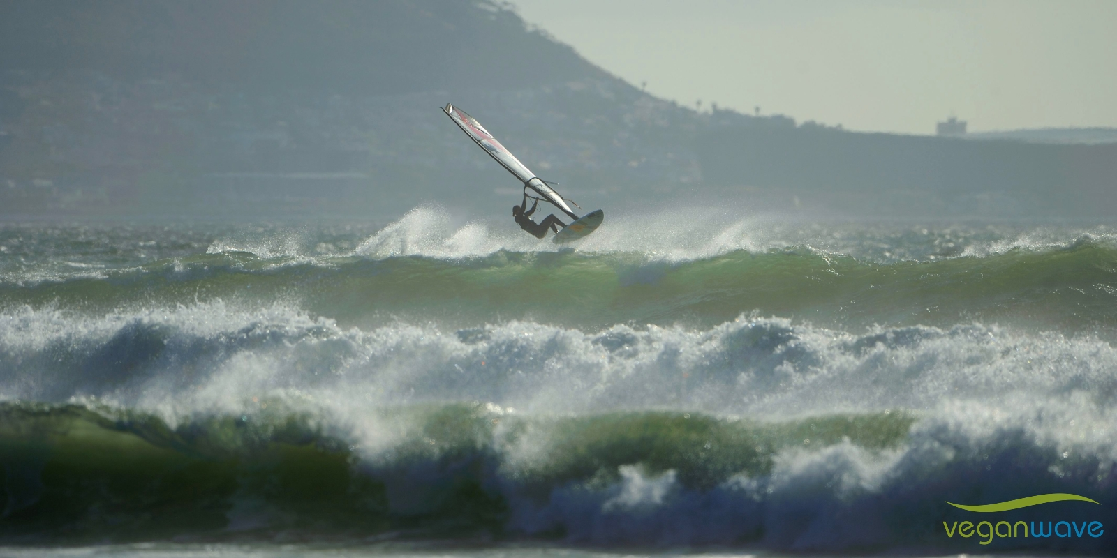 Veganwave Windsurf
